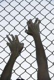 Χέρια που πιάνονται επάνω στο φράκτη καλωδίων πλέγματος φυλακών Στοκ Εικόνα