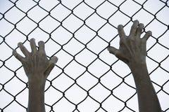 Χέρια που πιάνονται επάνω στο φράκτη καλωδίων πλέγματος φυλακών Στοκ εικόνες με δικαίωμα ελεύθερης χρήσης