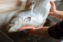 Χέρια που πλένουν τα μεγάλα ψάρια Στοκ Εικόνες