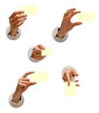 χέρια συλλογής που απομ Στοκ εικόνες με δικαίωμα ελεύθερης χρήσης