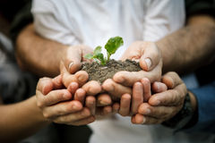 Χέρια της οικογένειας αγροτών Στοκ Φωτογραφία