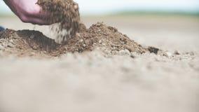 Χέρια της Farmer που κρατούν και που χύνουν το πίσω οργανικό χώμα στο φως ανατολής φιλμ μικρού μήκους