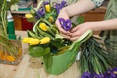 Χέρια του ανθοκόμου που κάνει την ανθοδέσμη να αναπηδήσει τα λουλούδια Στοκ εικόνες με δικαίωμα ελεύθερης χρήσης