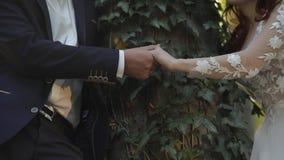 Χέρια του νεόνυμφου με τη νύφη στο δασικό πάρκο Γαμήλιο ζεύγος Ευτυχής οικογένεια φιλμ μικρού μήκους