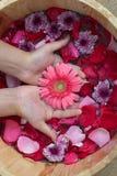 Χέρια SPA με τα λουλούδια για τη νέα κυρία Στοκ φωτογραφία με δικαίωμα ελεύθερης χρήσης