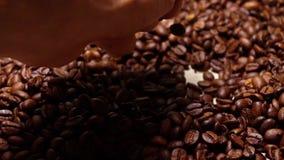 Χέρι ατόμων που εκσκάπτει τα ψημένα φασόλια καφέ, έξοχος σε αργή κίνηση πυροβολισμός απόθεμα βίντεο
