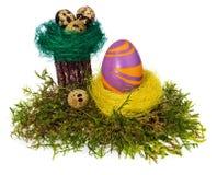 Χέρι αυγών Πάσχας που χρωματίζεται πολύχρωμο στη φωλιά πουλιών, δασικό βρύο, Στοκ φωτογραφία με δικαίωμα ελεύθερης χρήσης