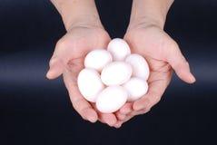 χέρι αυγών Στοκ Εικόνα