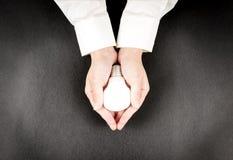 χέρι βολβών που κρατά το πυ Στοκ Φωτογραφία