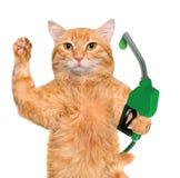 Χέρι γάτας που χρησιμοποιεί το ακροφύσιο καυσίμων με μια πτώση των φιλικών προς το περιβάλλον καυσίμων Στοκ Φωτογραφία