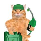 Χέρι γάτας που χρησιμοποιεί το ακροφύσιο καυσίμων με μια πτώση των φιλικών προς το περιβάλλον καυσίμων Στοκ φωτογραφία με δικαίωμα ελεύθερης χρήσης