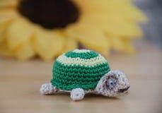 Χέρι - γίνοντη χελώνα Στοκ εικόνες με δικαίωμα ελεύθερης χρήσης