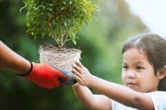 Χέρι γονέα που φορά το γάντι που δίνει το νέο δέντρο σε ένα παιδί Στοκ φωτογραφίες με δικαίωμα ελεύθερης χρήσης