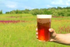 χέρι γυαλιού μπύρας Στοκ Εικόνες