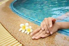 Χέρι γυναίκας με το λουλούδι plumeria στην πισίνα Στοκ Φωτογραφία