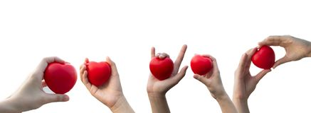 Χέρι γυναίκας που κρατά μια κόκκινη καρδιά στο απομονωμένο άσπρο υπόβαθρο στοκ εικόνες
