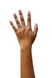 Χέρι γυναικών που απομονώνεται σε ένα άσπρο υπόβαθρο Στοκ εικόνες με δικαίωμα ελεύθερης χρήσης