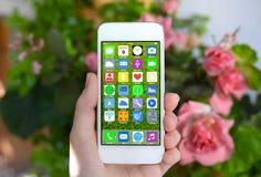 Χέρι γυναικών που κρατά το άσπρο τηλέφωνο με τα εικονίδια εγχώριας οθόνης apps Στοκ φωτογραφία με δικαίωμα ελεύθερης χρήσης