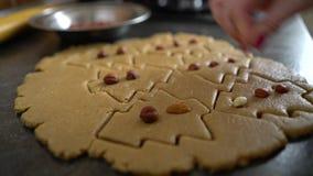 Χέρι γυναικών που προσθέτει τα καρύδια στα ακατέργαστα μπισκότα που κόβονται με μορφή κινηματογράφησης σε πρώτο πλάνο χριστουγενν φιλμ μικρού μήκους