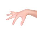 Χέρι γυναικών στο λευκό Στοκ Εικόνες