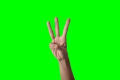 Χέρι επιχειρησιακών γυναικών Στοκ εικόνες με δικαίωμα ελεύθερης χρήσης