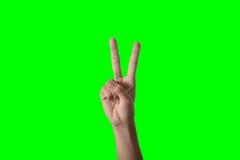 Χέρι επιχειρησιακών γυναικών Στοκ εικόνα με δικαίωμα ελεύθερης χρήσης