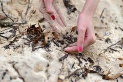 χέρι και άμμος στοκ εικόνες