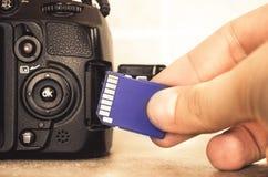 Χέρι καρτών SD Στοκ εικόνες με δικαίωμα ελεύθερης χρήσης