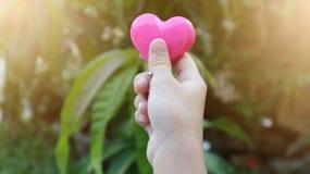 Χέρι κοριτσιών που κρατά τη ρόδινη καρδιά και το ελαφρύ υπόβαθρο Στοκ Εικόνες