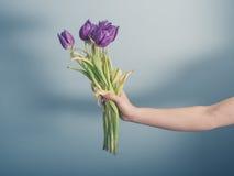 Χέρι με τα νεκρά λουλούδια Στοκ Φωτογραφία