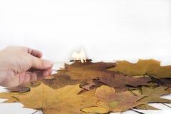 Χέρι με το κάψιμο της αντιστοιχίας στο υπόβαθρο φύλλων σφενδάμου Στοκ Εικόνες