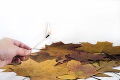 Χέρι με το κάψιμο της αντιστοιχίας στο υπόβαθρο φύλλων σφενδάμου Στοκ φωτογραφίες με δικαίωμα ελεύθερης χρήσης