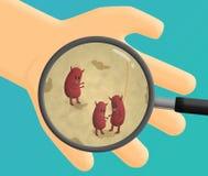 χέρι μικροβίων Στοκ Εικόνες