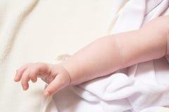 χέρι μωρών στοκ φωτογραφία