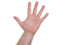 Χέρι, πέντε δάχτυλα στοκ φωτογραφία με δικαίωμα ελεύθερης χρήσης