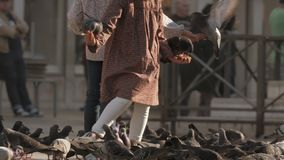 Χέρι παιδιών που ταΐζει τα περιστέρια απόθεμα βίντεο