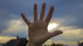 Χέρι παλαμών Στοκ Φωτογραφία