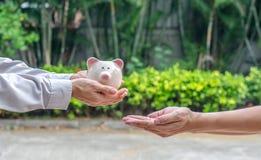 Χέρι που δίνει τη piggy τράπεζα πέρα από το πάρκο υπαίθρια στοκ εικόνα