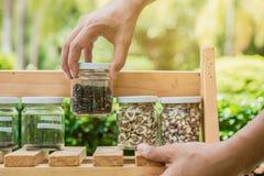 Χέρι που κρατά ένα βάζο με τους σπόρους μέσα, στα ξύλινα ράφια Η οικολογία συντηρεί την έννοια Στοκ εικόνες με δικαίωμα ελεύθερης χρήσης