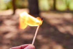 Χέρι που κρατά μια αντιστοιχία στην πυρκαγιά στο δάσος στοκ φωτογραφίες
