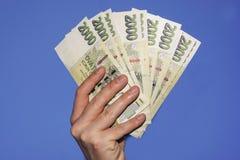 Χέρι που κρατά τα πράσινα τσεχικά τραπεζογραμμάτια Στοκ εικόνα με δικαίωμα ελεύθερης χρήσης