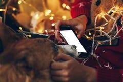 Χέρι που κρατά την κενή έξυπνη τηλεφωνική οθόνη και που παρουσιάζει στο σκυλί στην πλάτη στοκ φωτογραφίες
