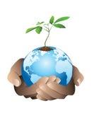 Χέρι που κρατά τη γη με ένα μικρό δέντρο. Διανυσματική απεικόνιση