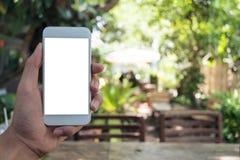 Χέρι που κρατά το άσπρο κινητό τηλέφωνο με την κενή οθόνη με το πράσινο υπόβαθρο φύσης Στοκ εικόνα με δικαίωμα ελεύθερης χρήσης