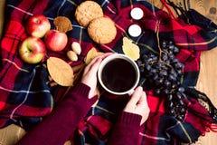 Χέρι που κρατά φλιτζανιών του καφέ της Apple μπισκότων κανέλας σταφυλιών την ξύλινη υποβάθρου τοπ άποψη έννοιας τρόπου ζωής φθινο Στοκ Εικόνα