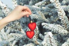 Χέρι που κρατά δύο καρδιές υπαίθριες πέρα από τα χιονώδη δέντρα πεύκων Στοκ Εικόνες