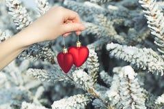 Χέρι που κρατά δύο καρδιές υπαίθριες πέρα από τα χιονώδη δέντρα πεύκων Στοκ εικόνες με δικαίωμα ελεύθερης χρήσης