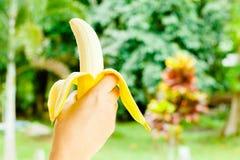 Χέρι που κρατούν μια μπανάνα, υγιή τρόφιμα, τις μπανάνες πλούσιες σε βιταμίνες, τον υγιείς τρόπο ζωής και την πρόληψη της ανεπάρκ Στοκ εικόνες με δικαίωμα ελεύθερης χρήσης