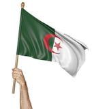 Χέρι που κυματίζει υπερήφανα τη εθνική σημαία της Αλγερίας διανυσματική απεικόνιση