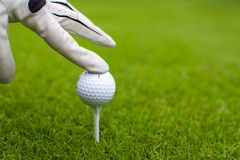 Χέρι που τοποθετεί την γκολφ-σφαίρα στο γράμμα Τ πέρα από το γήπεδο του γκολφ Στοκ φωτογραφία με δικαίωμα ελεύθερης χρήσης